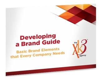 Developing-a-Bradn-Guide-ebook.jpg